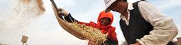 农村土地使用权改革是打通内需大发展的战略通道