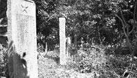 杂草丛生的烈士墓