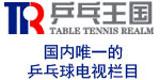 乒乓王国,横滨世乒赛